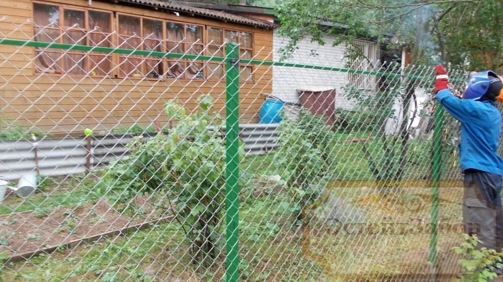 Забор сделанный из сетки рабицы 87