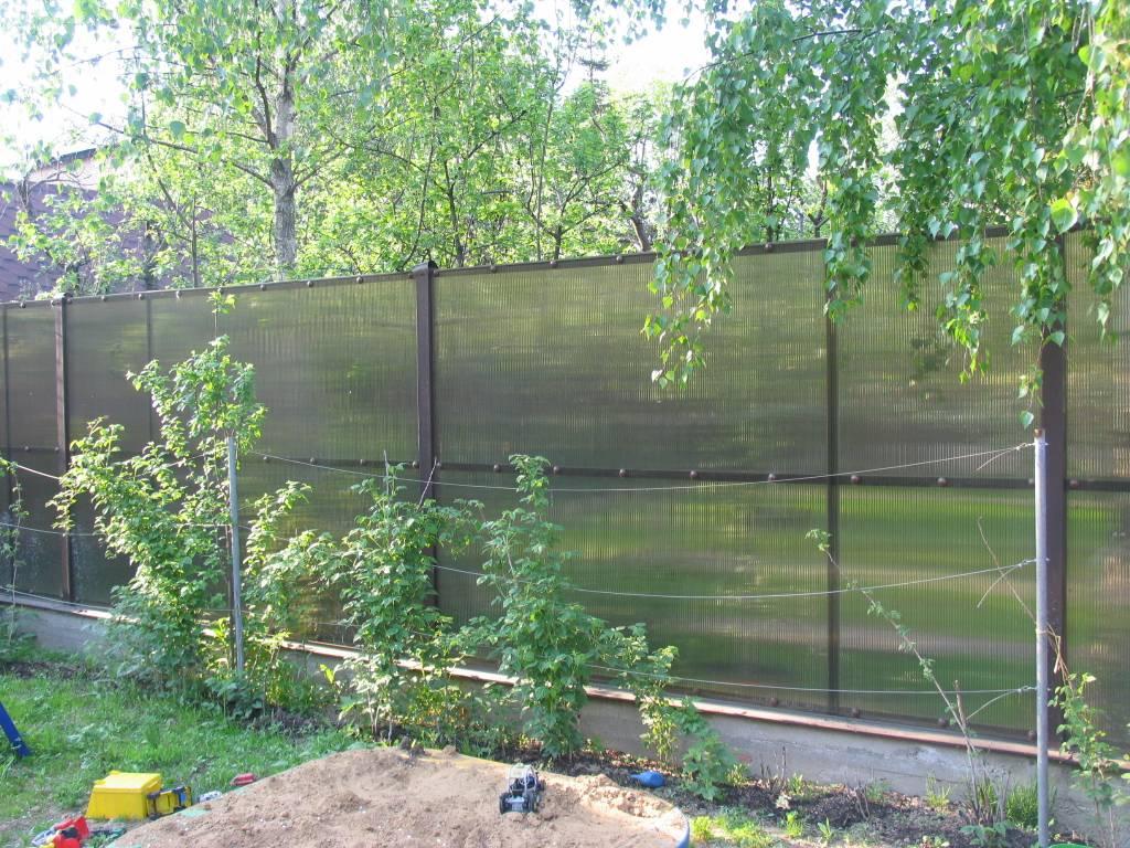 Забор на даче своими руками поликарбонат